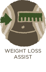 Weight Loss Assist